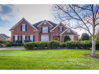Kingsport Single Family Home For Sale: 3021 Wandering Drive