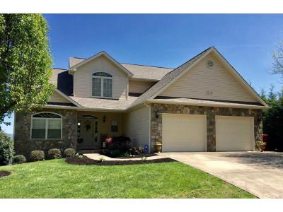 Single Family Home For Sale: 210 Michaels Ridge Blvd