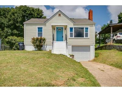 Kingsport Single Family Home For Sale: 189 Mullins