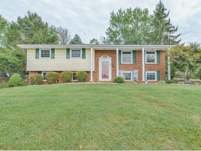 Kingsport Single Family Home For Sale: 4824 Landon Court