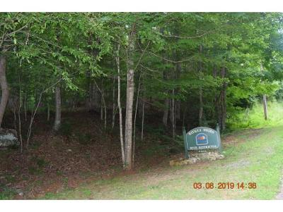 Butler TN Residential Lots & Land For Sale: $54,000