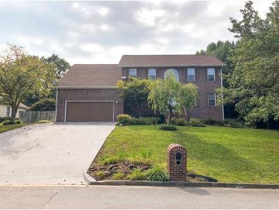 Johnson City Single Family Home For Sale: 302 Glen Oaks Drive