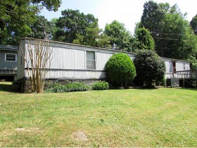 Elizabethton Single Family Home For Sale: 157 Scafford Branch Road