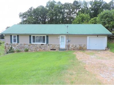 Kingsport Single Family Home For Sale: 512 Newland Ave