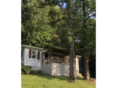 Bristol VA Single Family Home For Sale: $95,000