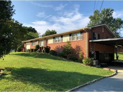 Single Family Home For Sale: 203 Clarendon Ln