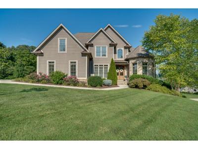 Blountville Single Family Home For Sale: 212 Grande Harbor Way