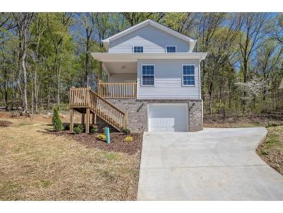 Kingsport Single Family Home For Sale: 1719 Bridle Ct.