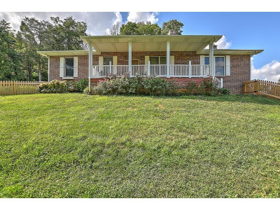 Johnson City Single Family Home For Sale: 168 Bill Garland Rd