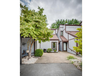 Blountville Condo/Townhouse For Sale: 780 Hamilton Road #G2
