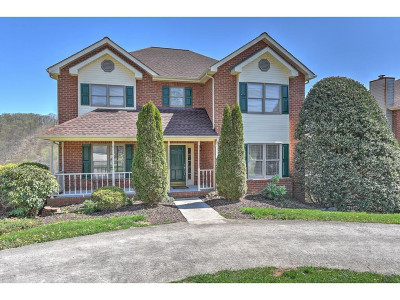 Kingsport Single Family Home For Sale: 4843 Silver Court