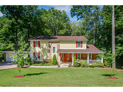 Kingsport Single Family Home For Sale: 4408 Beechcliff Dr.