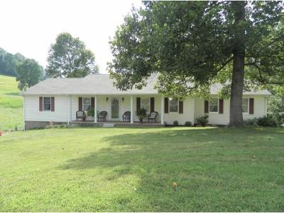 Single Family Home For Sale: 436 Parks Worley
