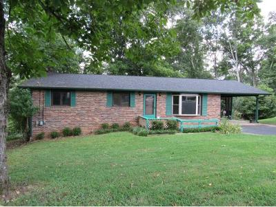Single Family Home For Sale: 492 Merman Rd