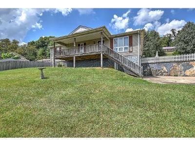 Single Family Home For Sale: 110 Britt
