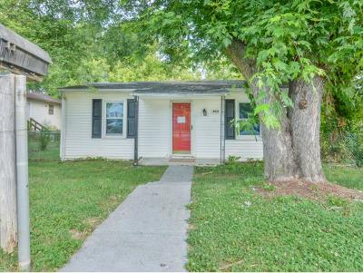 Single Family Home For Sale: 413 Colorado St