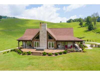 Single Family Home For Sale: 2706 Big Stoney Creek Road