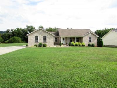 Elizabethton Single Family Home For Sale: 215 Alania Court