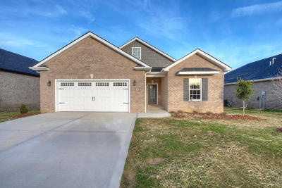 Piney Flats Single Family Home For Sale: 2356 Haystack Cir