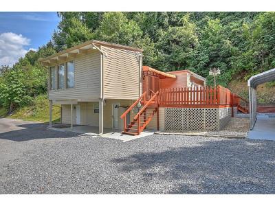 Bristol TN Single Family Home For Sale: $188,000