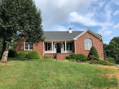 Jonesborough Single Family Home For Sale: 610 Summit Drive