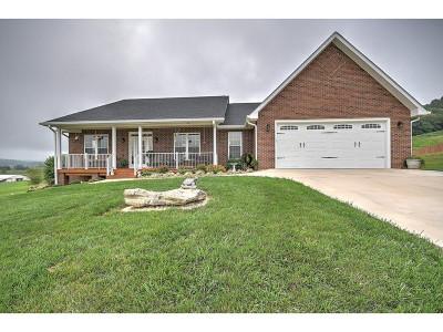Bristol VA Single Family Home For Sale: $345,900