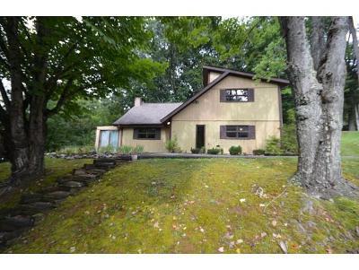 Johnson City Single Family Home For Sale: 903 Hanson Dr.