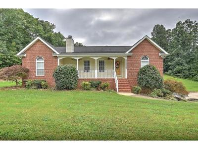 Greeneville Single Family Home For Sale: 40 E Allen Bridge Rd