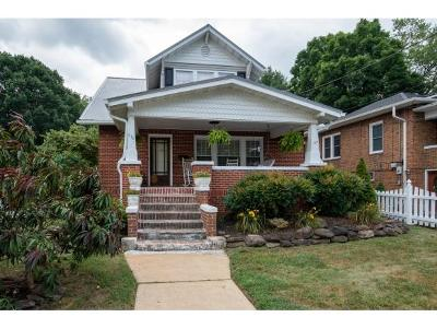 Elizabethton Single Family Home For Sale: 410 East H Street