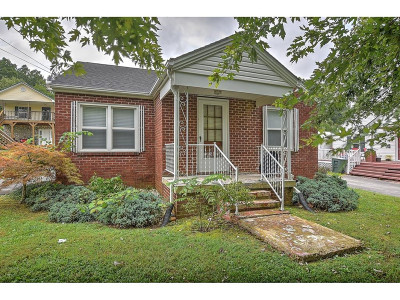 Greeneville Single Family Home For Sale: 1005 Asheville Hwy