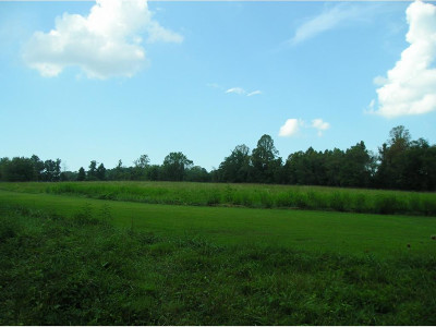 Johnson City Residential Lots & Land For Sale: 1709 King Springs Rd