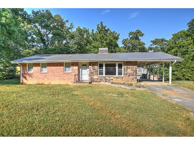 Johnson City Single Family Home For Sale: 374 Oak Grove Rd