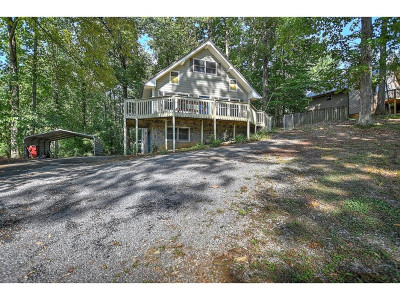 Johnson City Single Family Home For Sale: 1213 Old Gray Station Rd