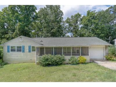 Kingsport Single Family Home For Sale: 932 Cooper Street