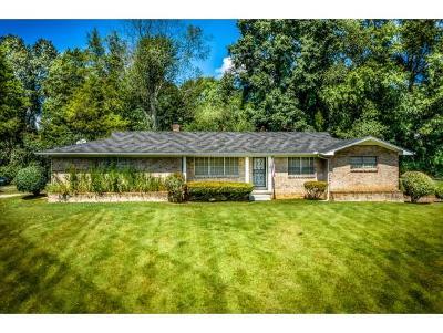 Hamblen County Single Family Home For Sale: 1240 Kidwell Ridge Road