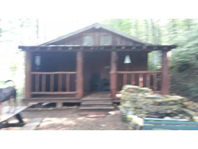 Greeneville Single Family Home For Sale: 563 Log Cabin