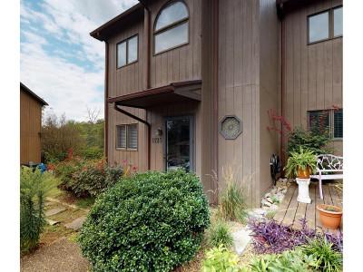 Greeneville TN Condo/Townhouse For Sale: $104,500