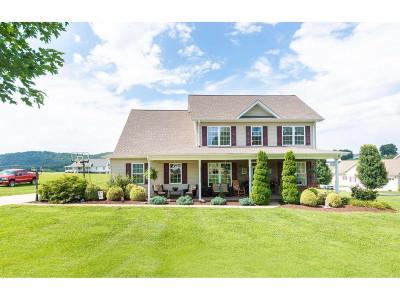 Bristol VA Single Family Home For Sale: $314,900