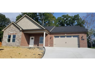 Piney Flats Single Family Home For Sale: 461 Grovemont Place