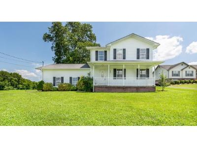 Single Family Home For Sale: 429 Leesburg