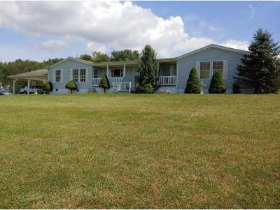 Blountville Single Family Home For Sale: 264 Scott Lane