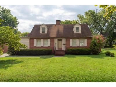 Kingsport Single Family Home For Sale: 1618 Belmeade Drive