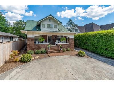 Johnson City Single Family Home For Sale: 704 E Watauga Ave