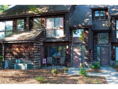 Johnson City Condo/Townhouse For Sale: 115 Beechnut Street #i5