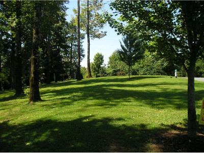 Piney Flats Residential Lots & Land For Sale: 152 Allison Timbers Road