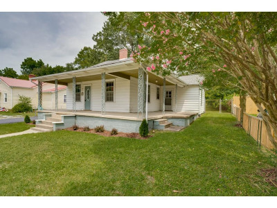 Kingsport Single Family Home For Sale: 733 Forest St