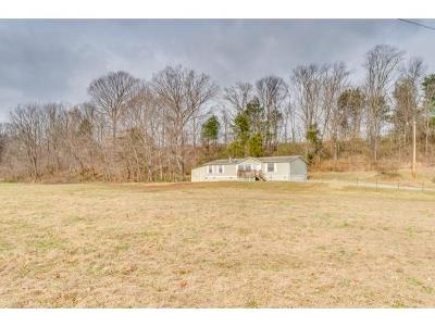 Johnson City Single Family Home For Sale: 469 Okolona Road
