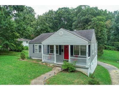 Kingsport Single Family Home For Sale: 322 Walker Street