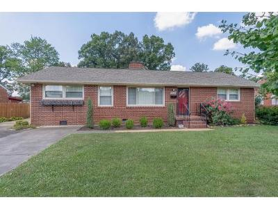 Kingsport Single Family Home For Sale: 1576 Warpath Dr
