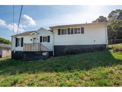 Kingsport Single Family Home For Sale: 248 Alabama Street